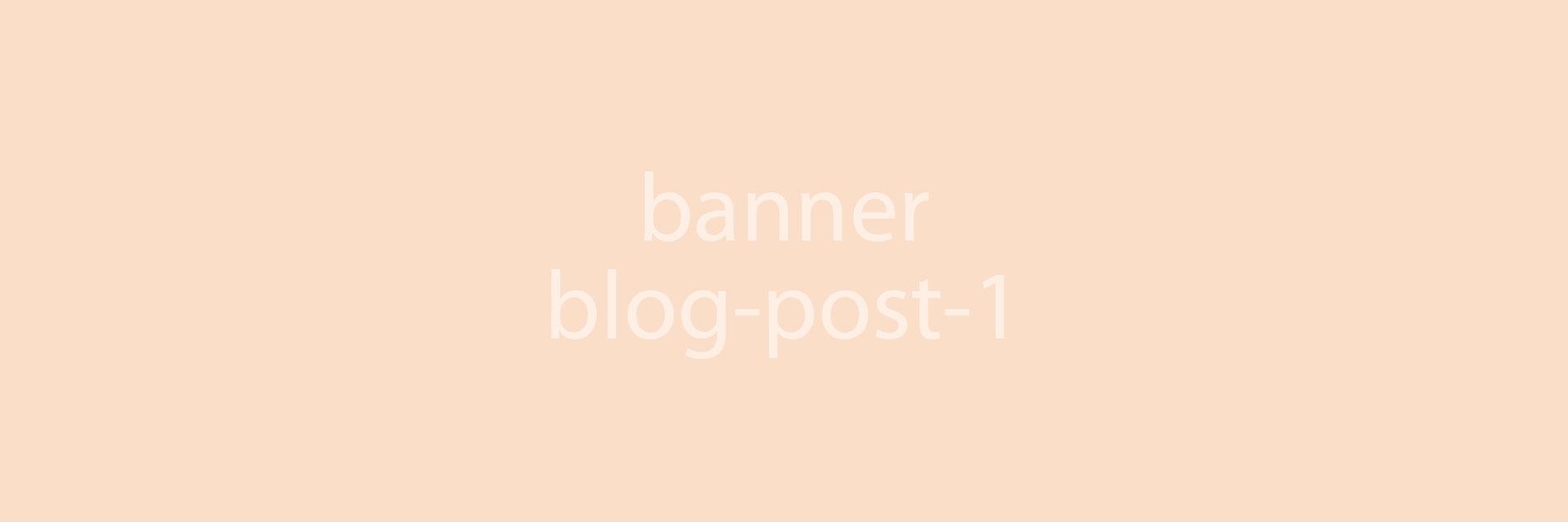 Blog Post 1